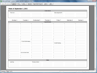 Custom Weekly for Microsoft Excel