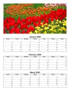 Quarterly Photo Calendar